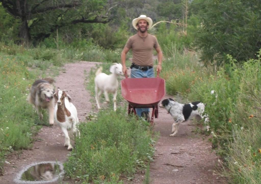 Too High to Fail author Doug Fine, goats, dogs, and wheelbarrow