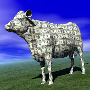 """Marijuana Is No Cash Cow:"" Deconstructing Poteconomics Coverage"