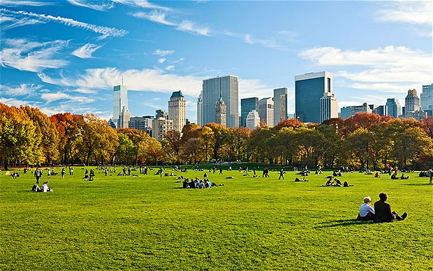 ny central park idyllic lawn