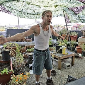 DVD Review: How Weed Won The West